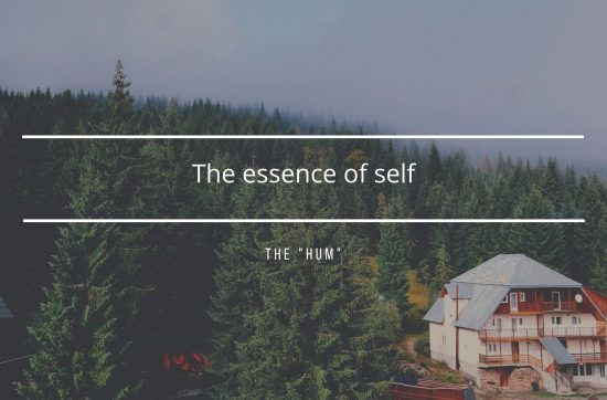 """The """"hum"""" – the essence of self"""
